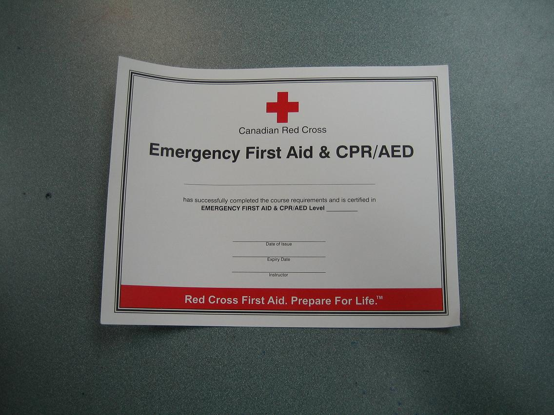 Red cross cpr certification online best 1betcityfo Images