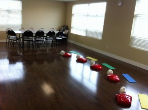 Red Deer First Aid